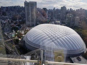 【スカイホール控室からドームを見下ろす】